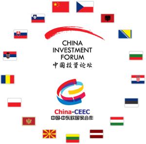 CIF-LLM-logo-s-vlajeckami-na-bile